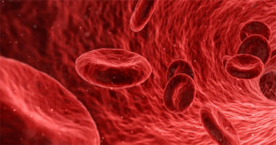 Blood Cells, Proteins, Why is it Important?