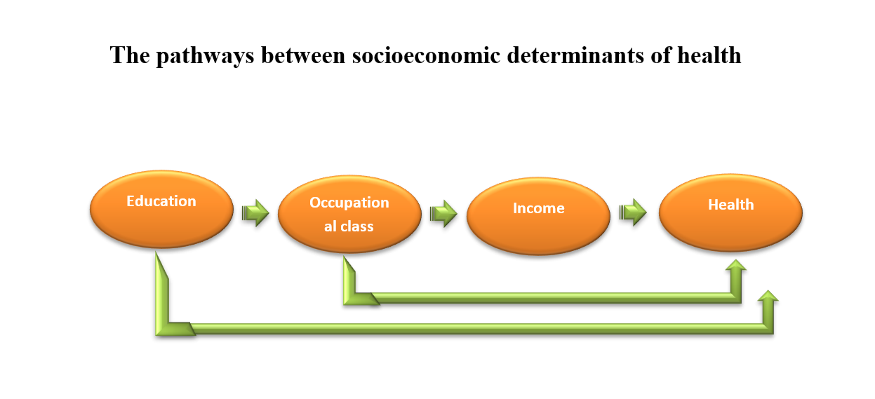 Social Stratification and Health Inequality, Psychology Topics