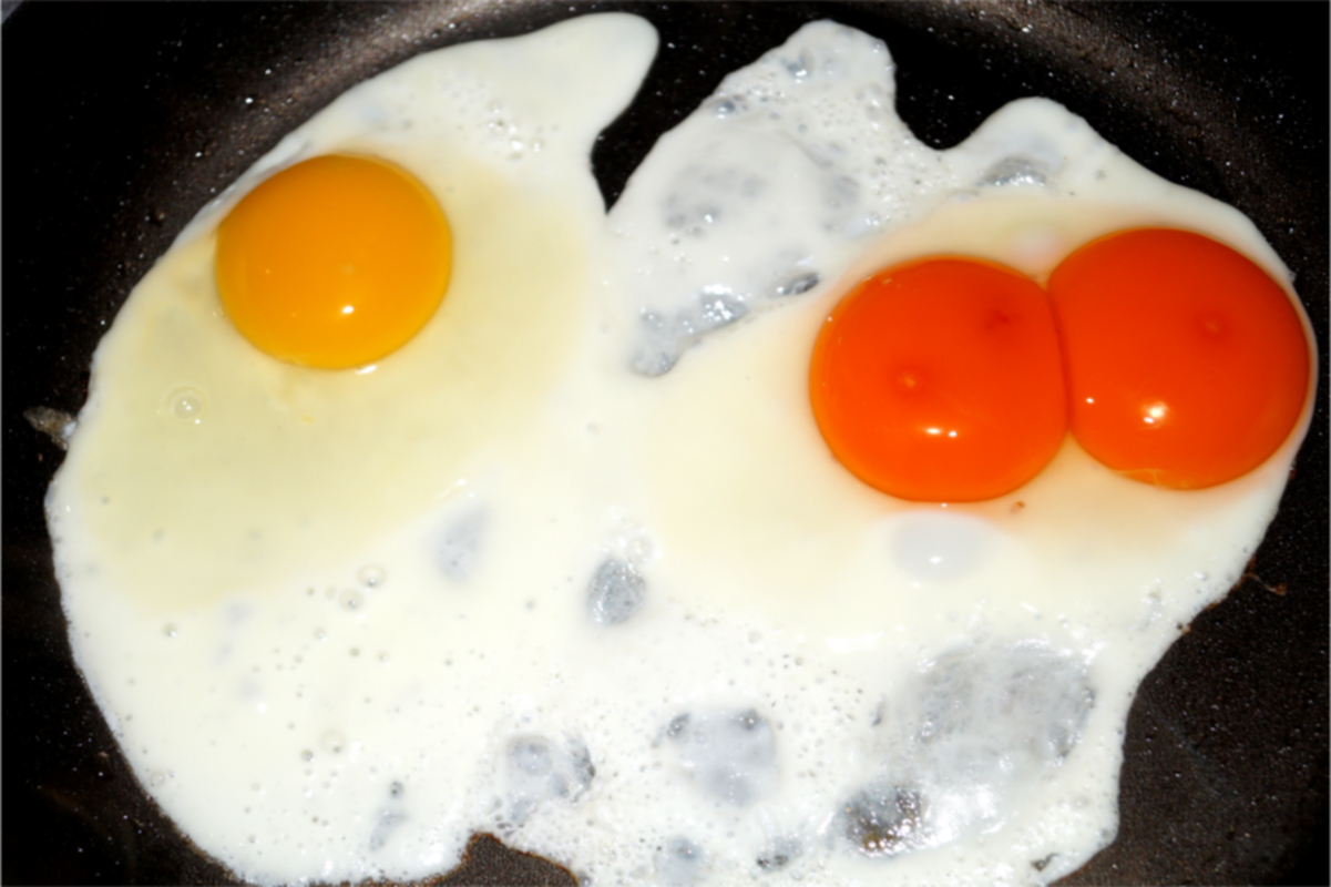 Double Yolked Egg and Single Yolked Egg, Nutrition
