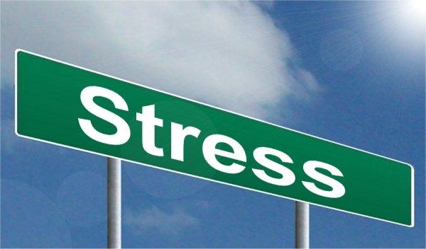 Stress Has No way